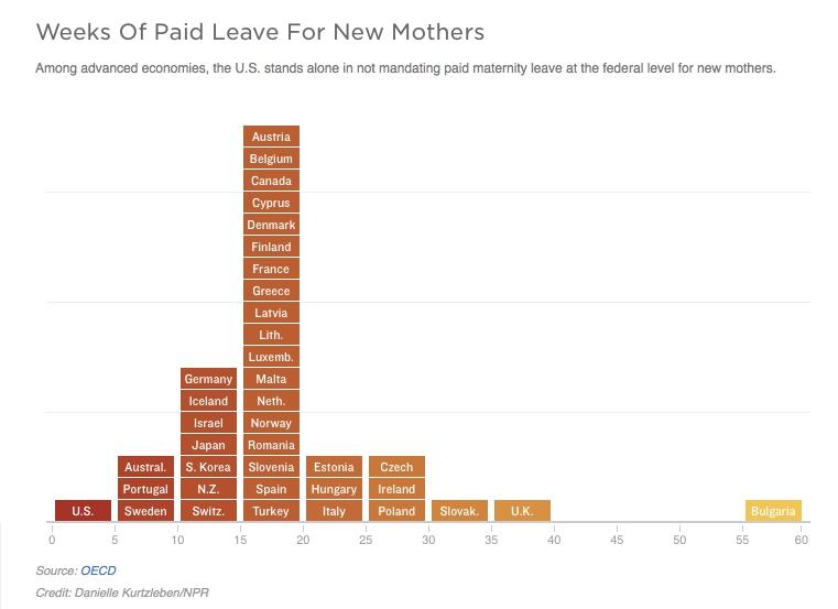Maternity Leave Graph